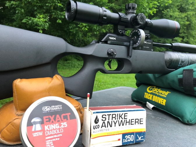 FX Crown .25 cal Synthetic: Our Favorite Shots